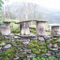 Miel Natural de Brezo Asturias